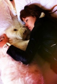 Olivia Wilde's Boyfriend and Other Celeb Twitpics of the Week
