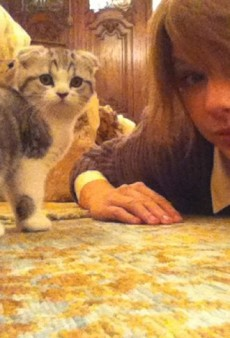 Taylor Swift is a Cat Lady and Other Celeb Twitpics of the Week