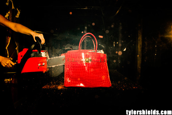 Tyler Shields and Francesa Eastwood destroy Birkin
