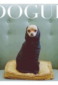 Dogue: Vogue Is Going to the Dogs, In the Good Way