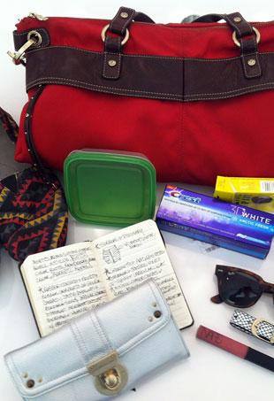 handbag-look-p