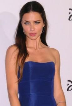 Adriana Lima Dines in Carolina Herrera's Electric Blue Resort 2014 Dress