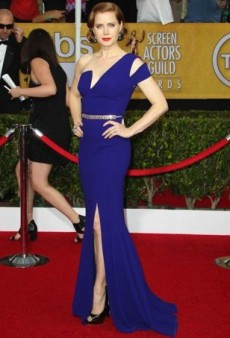 Screen Actors Guild Awards 2014 Red Carpet Recap