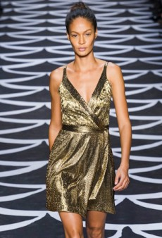 Diane von Furstenberg's Rapturous Wrap Party for Fall 2014 (Runway Review)