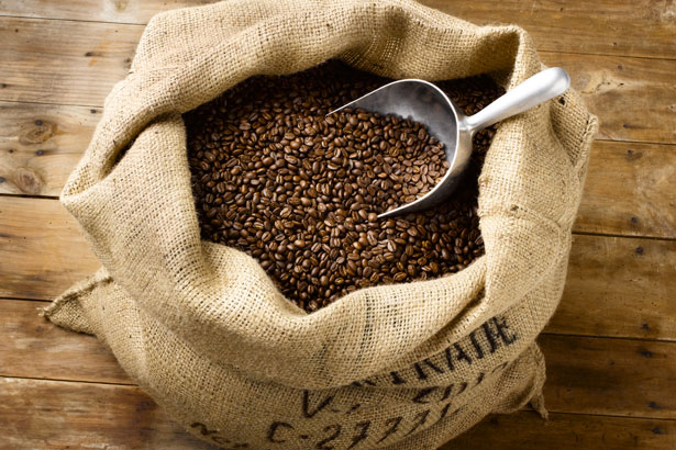 Roasted Coffee Beans in Burlap Bag