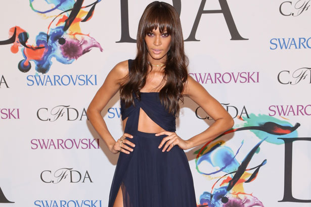 Joan Smalls wears Prabal Gurung to the 2014 CFDA Awards