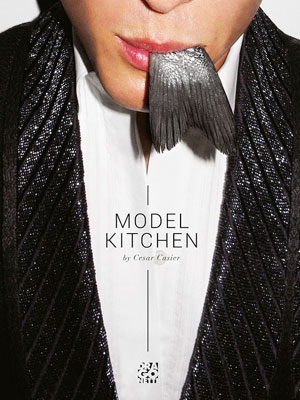 Model Kitchen cookbook