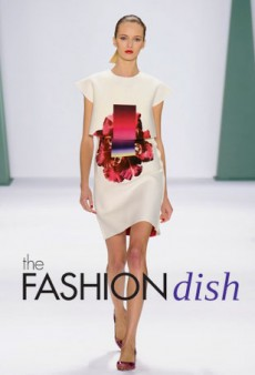Watch: Favorite Spring 2015 Collections from NYFW [theFashionDish]