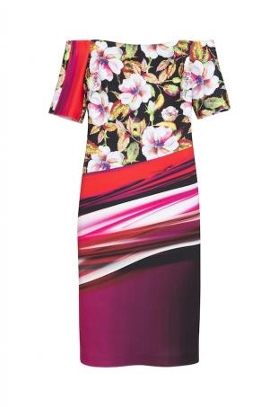 Clover Canyon dress portrait