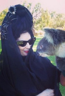 Parisian Fashion Blogger Diane Pernet to Launch Koala-Inspired Perfume