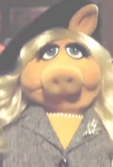 Watch: Bitch Better Have Miss Piggy's Money