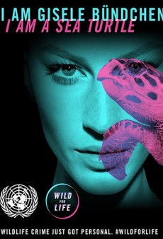 Gisele Bündchen Speaks Out Against Animal Trafficking