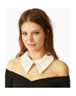 A Trendy Collar