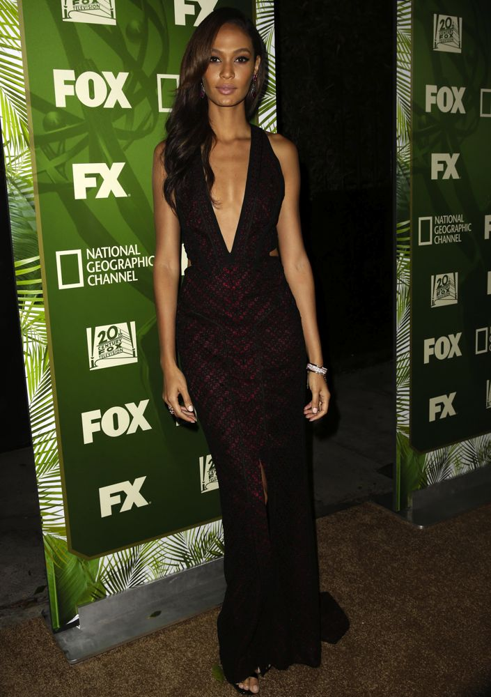 Joan Smalls at the FOX, 20th Century FOX Television, FX Networks and National Geographic Channel's 2014 Emmy Award Nominee Celebration