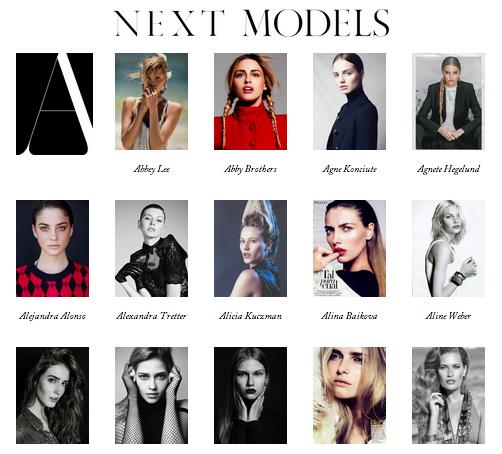 Next Models (12.47%)