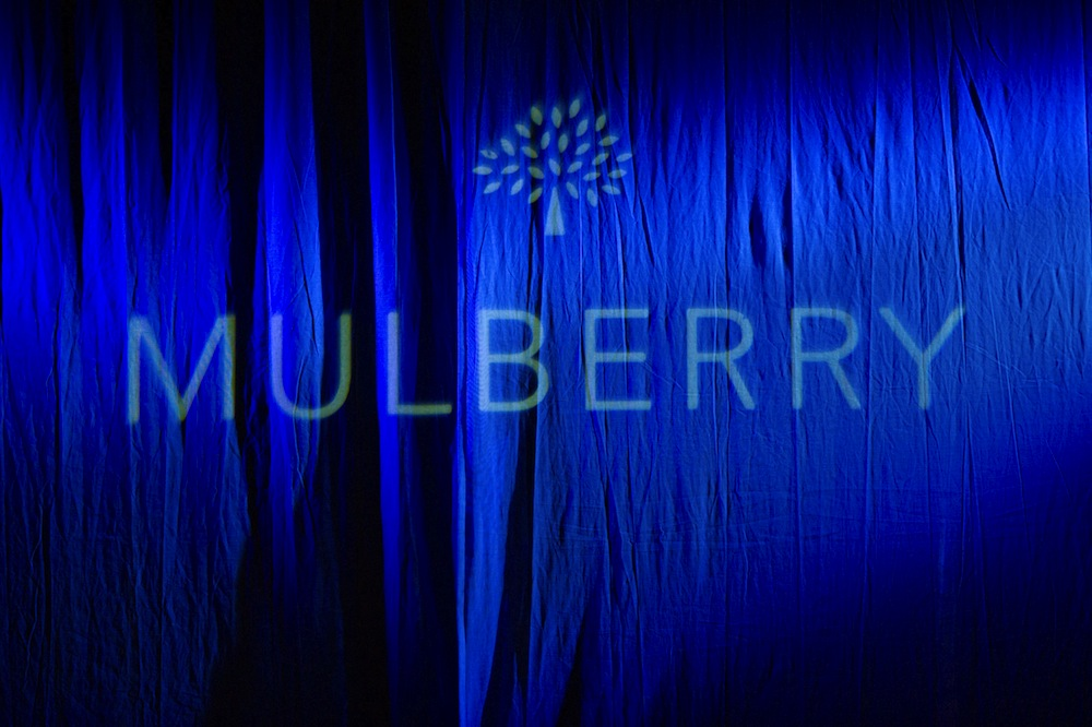 Mulberry Fall 2014