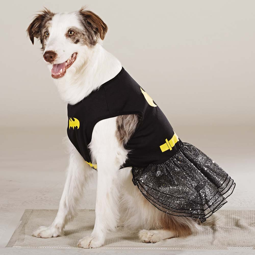 Batgirl & 47 Halloween Costumes for Your Dog - theFashionSpot