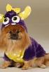 Mrs. Furry Dog