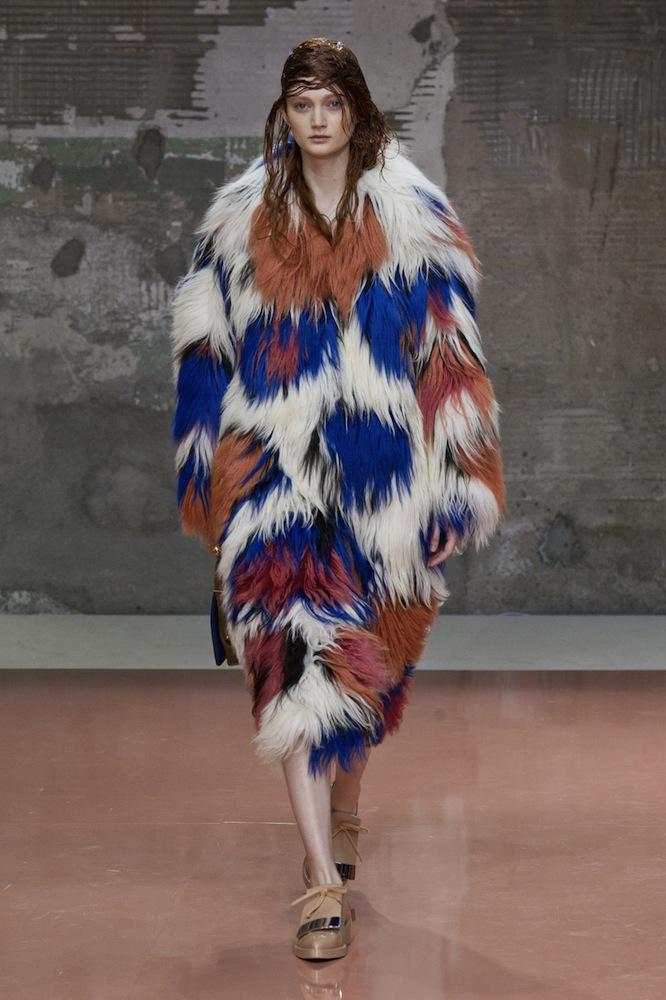 Bold, Colorful Fur