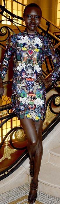 Alek Wek wears a Mary Katrantzou dress