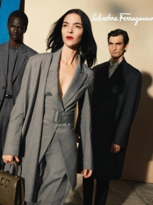 Fall 2020 campaigns